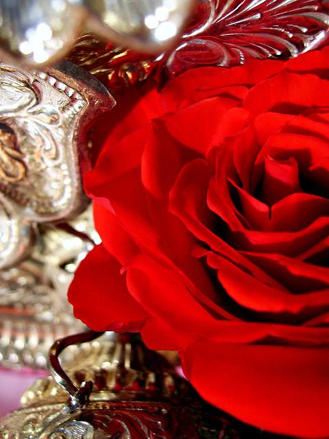 Ogni Chakra è come un Fiore